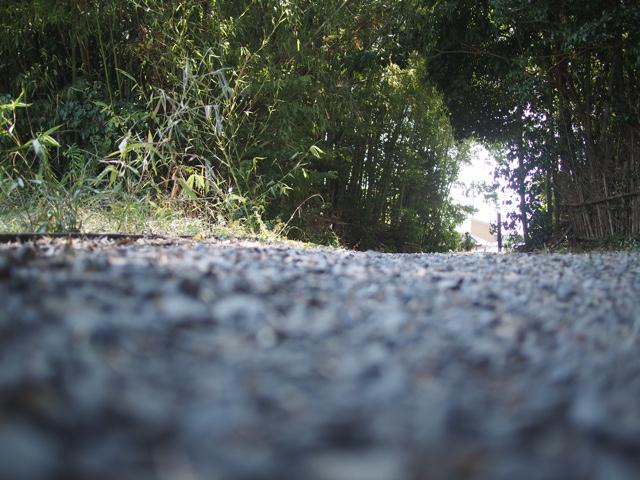 滋賀への道のり