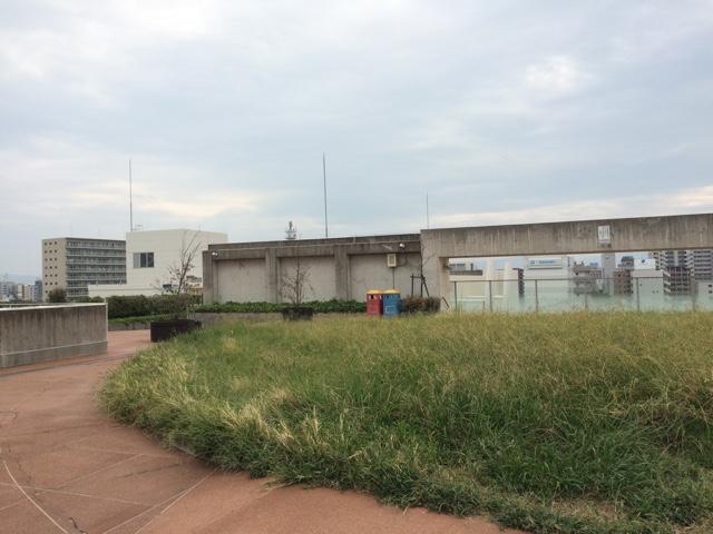屋上芝生広場