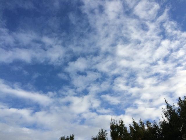 空が綺麗だ